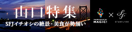画像:航空会社スターフライヤー 山口県観光スポット紹介