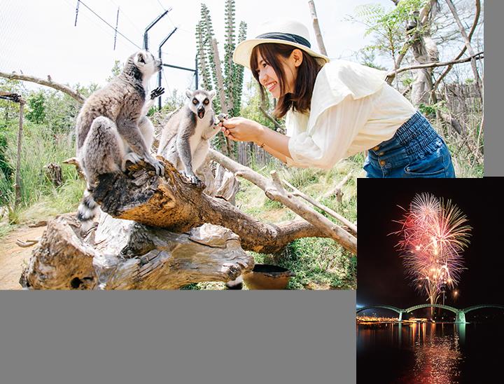 画像:動物と触れ合う女性